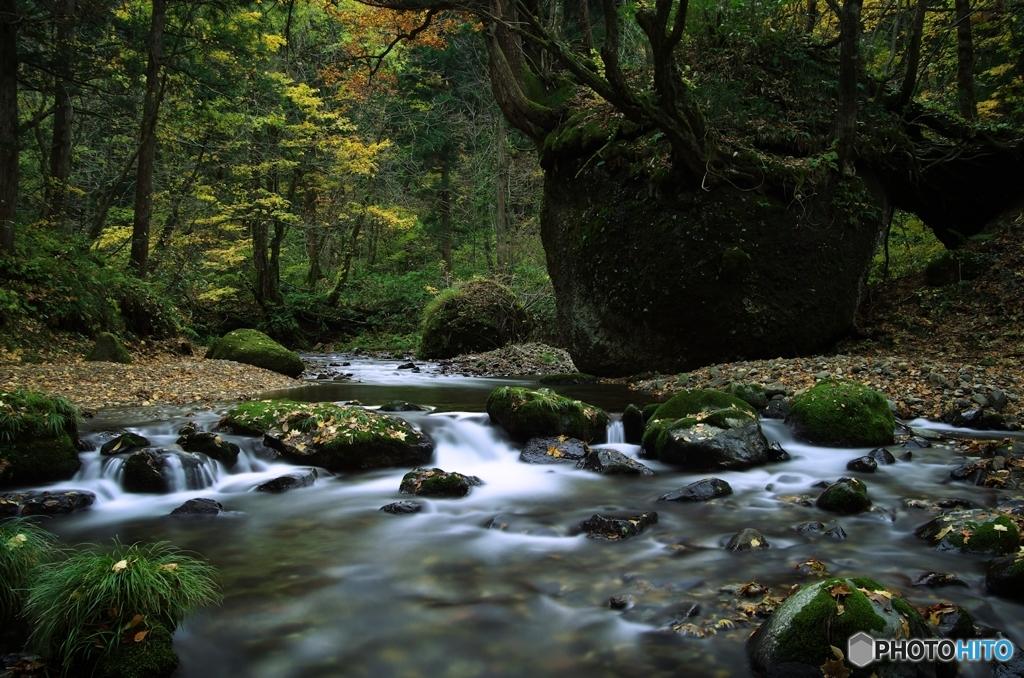 ネコバリ岩Ⅱ