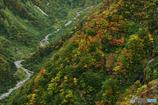 奈曾川の岸