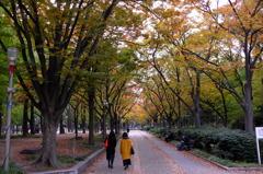 大阪ブラ散歩