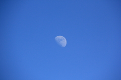 Day and Moon