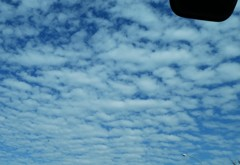 東名高速の鰯雲