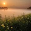 朝霧の彼方
