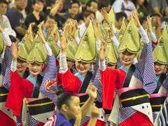 2016阿波踊り その1
