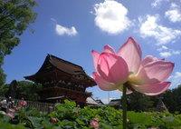 20120708_岡崎伊賀八幡宮