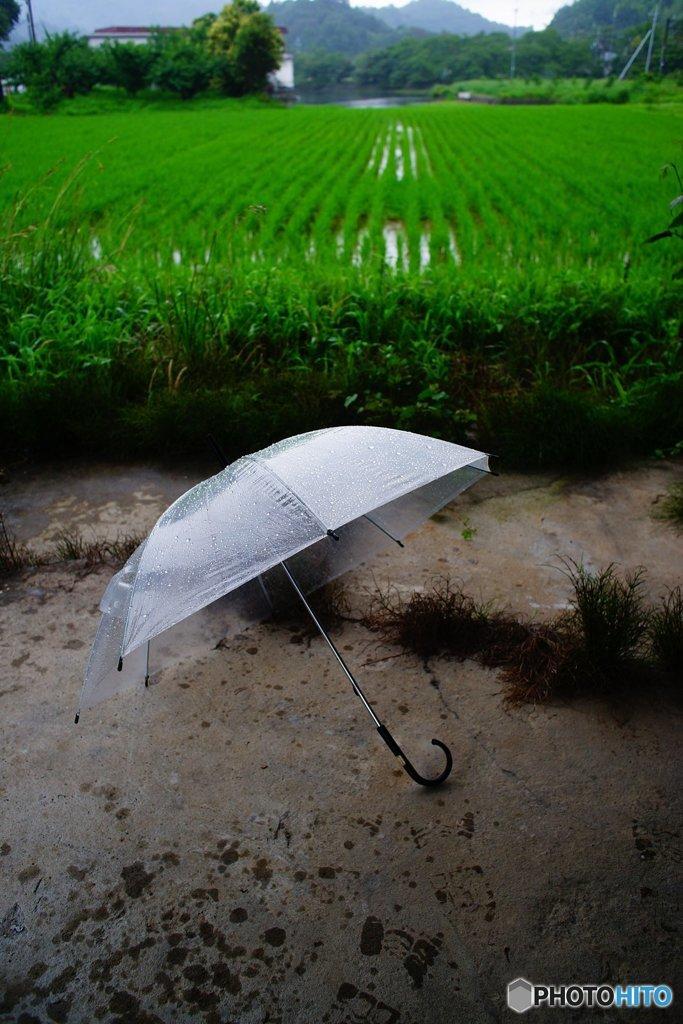 20170709_全国的に雨#03