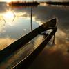 西の湖夕景_2