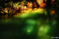 川の流れに