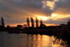夕陽と野田沼