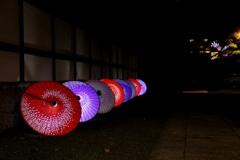 『松山城×二の丸庭園×ライトアップ』