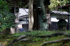 円覚寺の朝