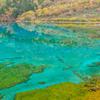 九寨溝の渓谷の景観と歴史地域