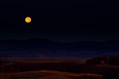 朝の小望月