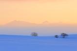 冬の夕暮れ
