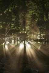 光のトビラ