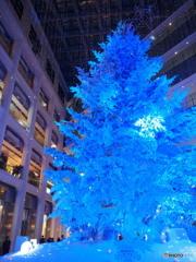 丸の内クリスマス2017-2