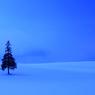 CANON Canon EOS 40Dで撮影した風景(Bleu Magic)の写真(画像)
