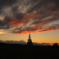 CANON Canon EOS 40Dで撮影した(夏暮れ)の写真(画像)