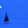 CANON Canon EOS Kiss X6iで撮影した(雪の祝福)の写真(画像)