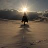 CANON Canon EOS 40Dで撮影した(懐冬)の写真(画像)
