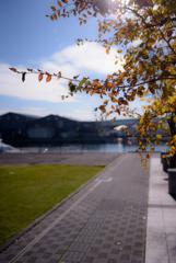 暖かい秋の日