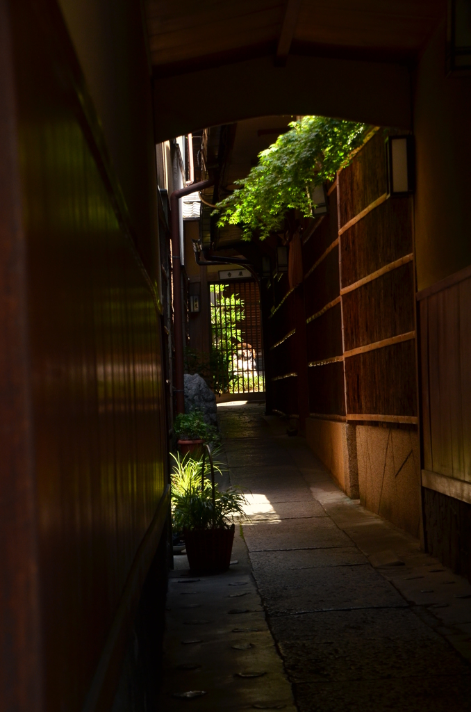 京の路地(ろーじ)
