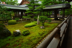 大覚寺・宸殿裏庭園