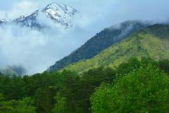 里山は深山幽谷3