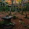 初冬の祇王寺8