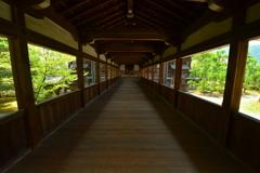 清涼寺回廊・夏2