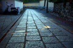 妙心寺長興院前の参道