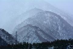 里山は深山幽谷