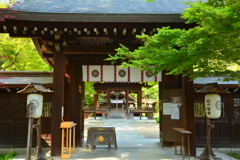 梨木神社の新緑
