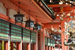 西院春日神社社殿と白梅