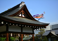 NIKON NIKON D7100で撮影した(西院春日神社・拝殿)の写真(画像)