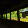 清涼寺回廊・夏1