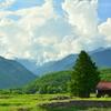 爺ガ岳を望む家4