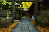 白雲神社の紅葉2
