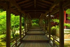大覚寺・村雨の廊下3