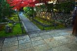 妙心寺天球院の紅葉