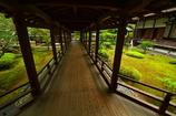 大覚寺・村雨の廊下1
