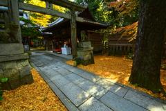 白雲神社の紅葉1