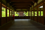 清涼寺弁天堂を望む