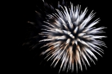 Fireworks (2017高瀬川納涼大花火大会7)
