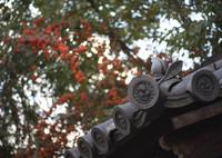 CANON Canon EOS 5D Mark IIIで撮影した(桃の魔よけ)の写真(画像)