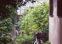 CONTAX RTSIIIで撮影した(京都のあるところ)の写真(画像)