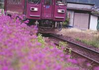 CONTAX RTSIIIで撮影した(牡丹列車)の写真(画像)