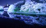 夜桜。。☆