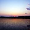 5月 田園に沈む夕日