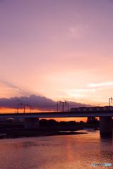 多摩川 IMGP8385