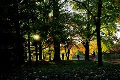 公園影絵 <1>
